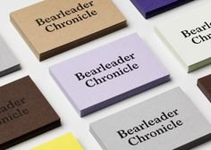 Visual identity and business cards for Bearleader designed by The Studio.
