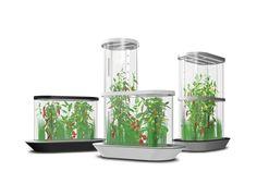 CropTech. design Hydroponic Systems, Hydroponics, Candle Holders, Candles, Design, Hydroponic Gardening, Porta Velas, Candy