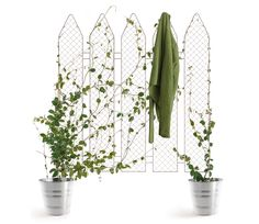 each fence module is reminiscent of a standard chain link fence and can be planted directly into the ground or into pots, allowing for numerous configurations, offering a screen of privacy through plant life.