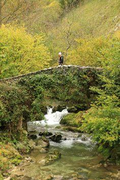 Conociendo Asturias: Picos de Europa
