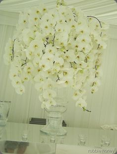 Phalaenopsis orchids in clear urns