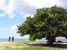 Fietsen door #Trinidad, #Cuba