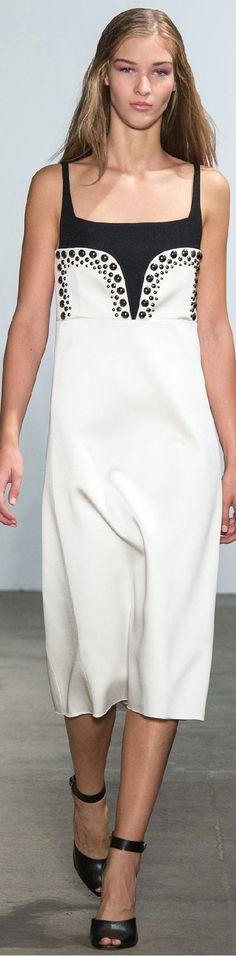 Spring 2015 Ready-to-Wear Derek Lam