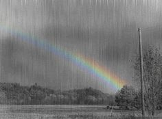"""The way I see it, if you want the rainbow, you gotta put up with the rain.""  Author: Dolly Parton"