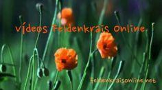 Vídeos Feldenkrais Online