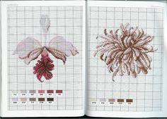 Gallery.ru / Фото #1 - Flower Variations - Mongia