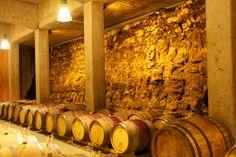 Österreich - Steiermark  Weingut Tement - Faßlager