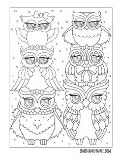 Ornamental Owls More Than 25 Fanciful Full Page Illustrations Depict The Cutest Of