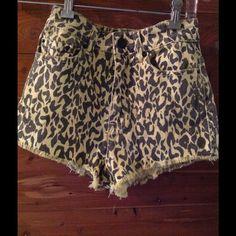 High rise cheetah cheeky urban BdG High rise kitty cheeky short, never worn! Urban Outfitters Pants