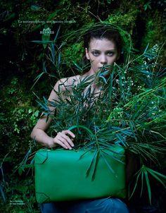 Jungle - Hermès
