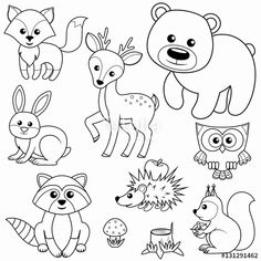 "Woodland Animal Coloring Pages Inspirational ""forest Animals Fox Bear Raccon Hare Deer Owl Art Drawings For Kids, Animal Drawings, Easy Drawings, Animal Coloring Pages, Colouring Pages, Coloring Books, Forest Animals, Woodland Animals, Fox Stock"