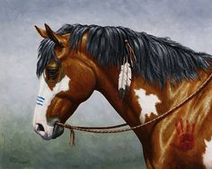 Bay Native American War Horse Print By Crista Forest