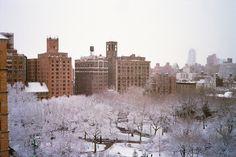 Manhattan, NY  Canon AF35ML Kodak Ultra 400 chrisgiuliano.com/
