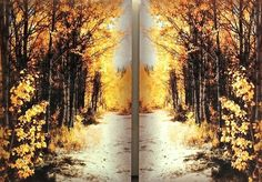 "PATH - Color, Medium: Original photo on aluminum. Size: 30"" h x 40 1/2"" w, diptych. #art #photography #fall #trees"