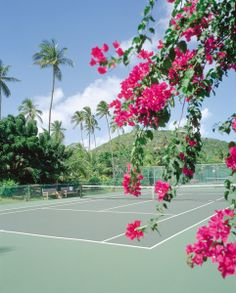 Anyone for tennis? Almost unique among Caribbean hotels, we have nine well-maintained tennis courts, including four which are floodlit for cooler, night-time play and one for children to shoot some basketball hoops. Rackets and balls are provided on a complimentary basis.  #tennis #sports #Antigua #caribbean #carlislebayantigua