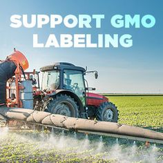 Consumers should have the right to know what's in the food they're eating. Sign our petition for nationwide mandatory GMO labeling today!