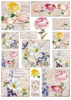 """Motiv-Strohseide """"Botanik"""" - Bastelshop und Hobby VBS Bastelbedarf Papel Vintage, Vintage Paper, Etiquette Vintage, Junk Art, Flower Images, Printable Stickers, Flower Frame, Vintage Flowers, Vintage Prints"""