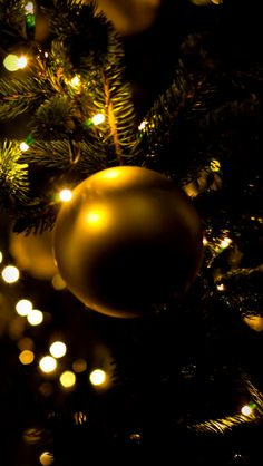 Christmas Tree Apple iPhone 5s hd wallpapers available for free download.