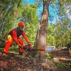 ANOTHER DAY. ANOTHER SLAY ❤️🌳✂️📷 #treebiz #arborist #nj #mondaymadness #treereaper #echousa #eatsawdust #echochainsaw #treework #treeremoval #treesurgeon #timber #modernlumberjack #hustletrees #treeserviceanonymous @echousa