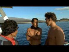 Sharkwater 2006 | Full documentary - YouTube