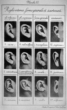 Man who invented the mug shot: The ground-breaking work of Alphonse Bertillon - Science - News - The Independent