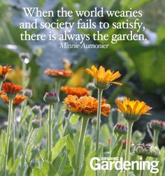 A garden is usually a piece of land that is used for growing flowers, trees, shrubs, and other plants. The act of caring for a garden by watering the flowers and plants and removing the weeds is called gardening. Garden Works, Garden Journal, Organic Gardening Tips, Organic Compost, Garden Quotes, Just Dream, Garden Signs, Flower Quotes, Garden Pests