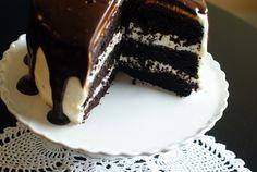 Chocolate chocolate chip cake