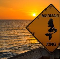 Bu yaz tüm plajlar biz denizkızlarını bekliyor! Hadi, sen de www.magictail.com.tr den en sevdiğin renkteki Magictail denizkızı kostümünü al, yazın hep beraber yüzelim!