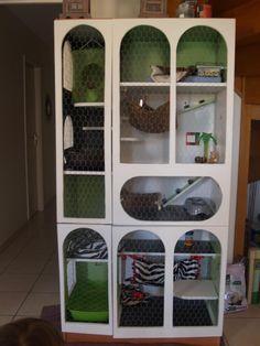 Afficher l'image d'origine Ferret, Shelving, Diy, Home Decor, Home Made, Animaux, Shelves, Decoration Home, Bricolage