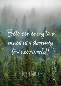 John Muir Quote: Between every two pines there is a doorway to a new world. Music Quotes Deep, Wall Art Quotes, Quote Wall, John Muir Quotes, Gifts For Nature Lovers, Life Quotes, Lovers Quotes, Bts Quotes, Motivational Quotes