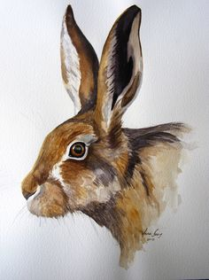 watercolour Hare by Annie Boag
