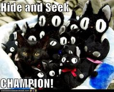 I want to squish them all. Especially the hide-and-seek champion there. :)