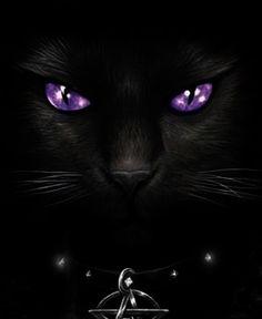 ♥PUB♥ 6 CAT FACE