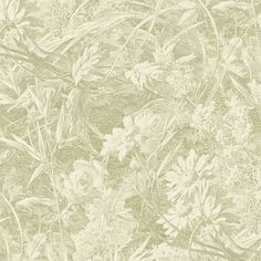Royal Daisy Wallpaper from the Liberty Art Fabrics Wallpaper Collection, with a design of a meadow filled with swaying grasses printed in sage. Daisy Wallpaper, Green Wallpaper, Fabric Wallpaper, Chinese Wallpaper, Liberty Art Fabrics, Feature Wallpaper, Hand Painted Walls, Bird Design, Wabi Sabi