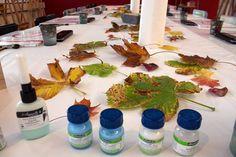 Aquarelle zum Herbstanfang | Schnappschüsse aus dem Aquarellkurs – bunter Herbstblätter (c) FRank Koebsch (2)