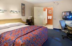 Superb Cheap, Discount Pet Friendly Albany Airport Hotel, New York | Red Roof Inn  Albany