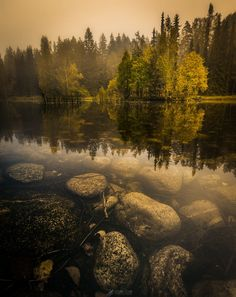 Peaceful misty autumn sunrise at Aulanko National urban park, Hämeenlinna, Finland. Nature Pictures, Cool Pictures, Urban Park, World Cities, City Landscape, Grand Teton National Park, Background Pictures, Autumn Trees, Natural Wonders
