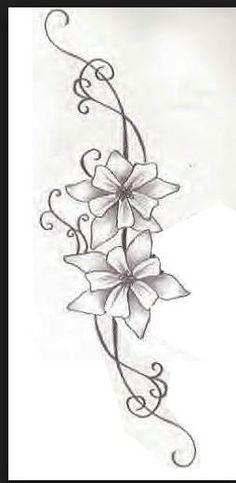 December birth month flower: Narcissus (daffodil)