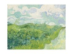 Green Wheat Fields, Auvers, 1890 Giclee Print at AllPosters.com