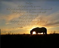 This brings so many memories of the horses I grew up with