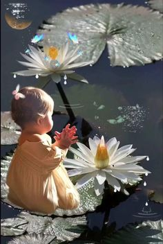 Beautiful Flowers Images, Beautiful Gif, Flower Images, Funny Happy Birthday Song, Birthday Songs, Beautiful Morning Quotes, Night Video, Photography Photos, Good Night