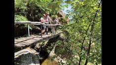 Fernweh geplagte Familien finden im Tessin Orte, die den exotischen Plätzen dieser Welt in nichts nachstehen und somit für diesen besonderen Sommer eine tolle Alternative darstellen, um auf Entdeckungsreise zu gehen. Wir haben vor einer Woche Locarno und das Centovalli besucht und wähnten uns zeitweise im Regenwald von Costa Rica, auf Trails durch den Grand Canyon oder an Hotspots entlang der Côte d' Azur. #Tessin #Schweiz #Familienferien #DieAngelones Garden Bridge, Costa Rica, Grand Canyon, Outdoor Structures, Locarno, Family Getaways, Travel Report, Road Trip Destinations, Grand Canyon National Park