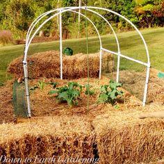 Deer Proof -  A PVC hoop with netting.