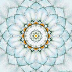 Soft teal mandala   sacred geometry art print   lotus flower petals   mind body soul   meditation