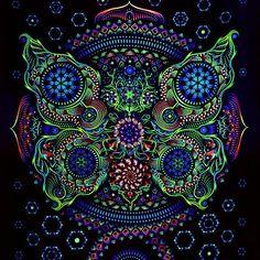 #Lsd #acid #acido #acid25 #peppa #lisergic #lisergia #dmt #hihg #hihgsociety #storner #stornerlife #psy #psychonaut #psychedelicart #psychedelic #psychedelics #psycho #psi #psytrance #psytrancefamily #mescaline #dimethyltryptamine #drugs #drug #alucinar #420 #ganjah #hippie