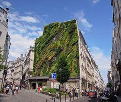 L'Oasis de Aboukir: um espaço verde no centro de Paris
