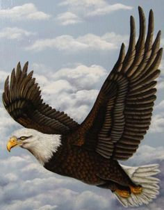 Hand Painted Eagle Wooden Wall Hanging by paintingfromtheheart Bird Paintings On Canvas, Acrylic Painting Canvas, Animal Paintings, Animal Drawings, Bird Pictures, Animal Pictures, Nature Pictures, Eagle Background, Eagle Artwork