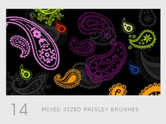 Mixed Sized Paisley Brushes by ~diebutterfliege