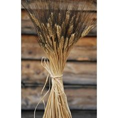 Blackbeard Wheat adds rustic beauty to your home decor. It's also a stunning accent in bouquets and boutonnieres for any summer or fall wedding or event. #blackbeardwheat #driedwheat #weddingideas #summerwedding #fallwedding #homedecor #farmhouse
