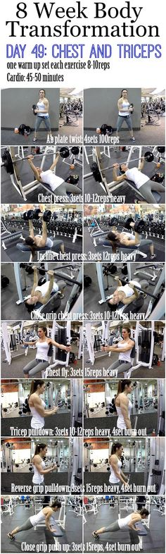 8 Week Body Transformation: Day 49 CHEST and TRICEPS - Fitness Food Diva